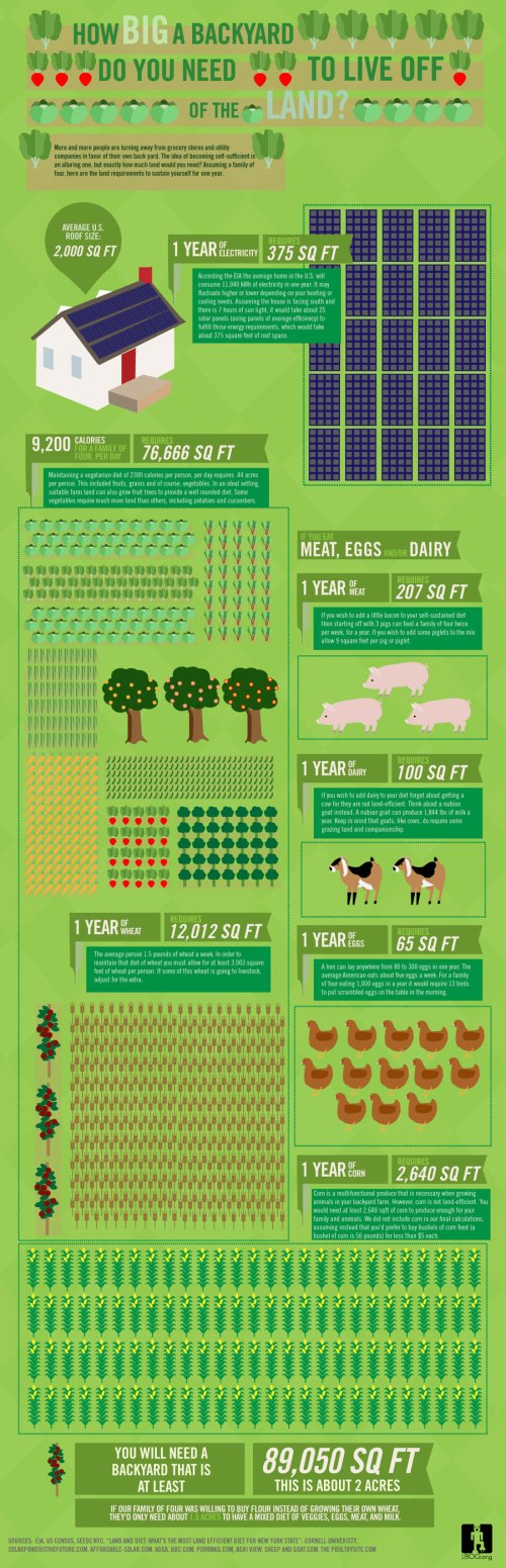 Backyard Farm: Infographic